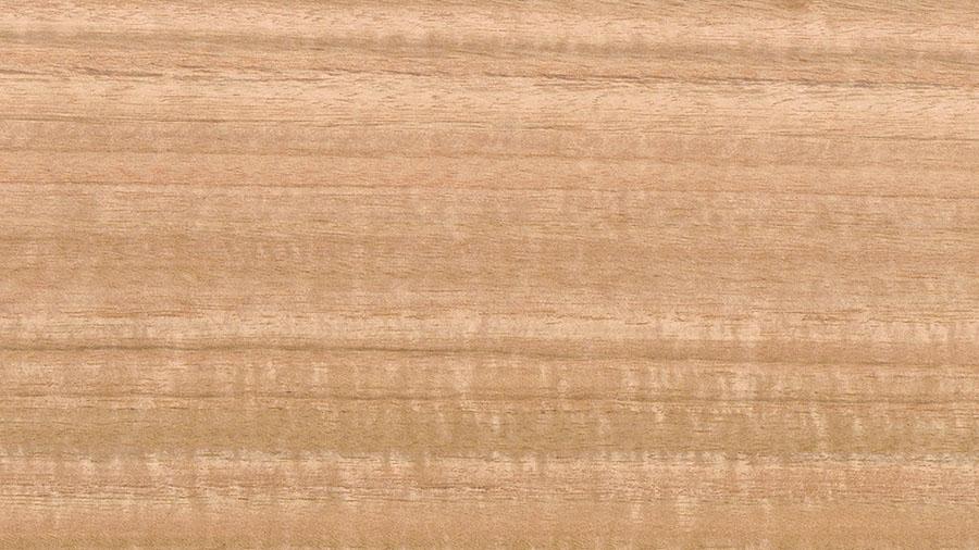 legno di eucalipto