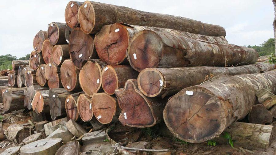 legname artigiano